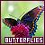 Butterflies:
