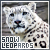 Snow Leopards: